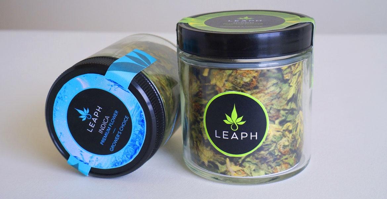 leaph5